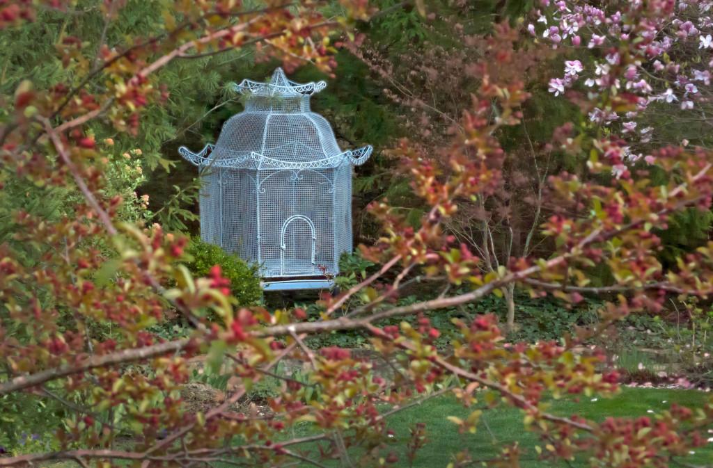 Spring-Birdcage